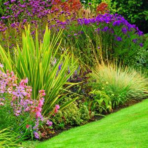 http://www.sunset.com/garden/earth-friendly/6-steps-water-wise-garden